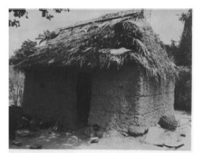 Essay on the arawaks